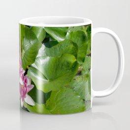 Lotus garden nature photo Coffee Mug