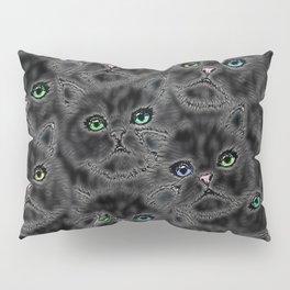 Black Kitten Faces Pillow Sham