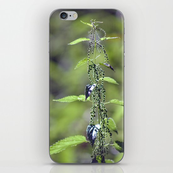 Stinging Nettle 5288 iPhone Skin