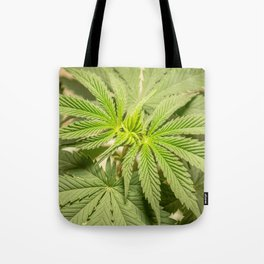 Top of the Clone Tote Bag