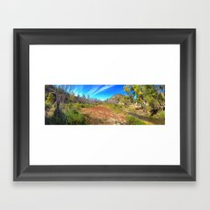 Gila Meadow Framed Art Print