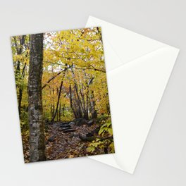 Woods 3 Stationery Cards
