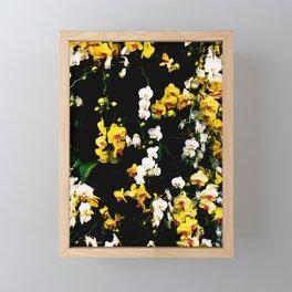 Orchid Celebration Framed Mini Art Print
