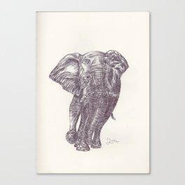 BALLPEN ELEPHANT 13 Canvas Print
