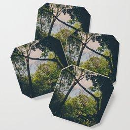 A frame within a frame Coaster