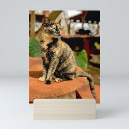 Goddess In Fur (Lanai Cat Sanctuary) Mini Art Print