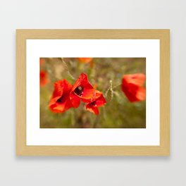 Poppies by Boone Speed Framed Art Print