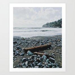 Muir Woods Beach Art Print