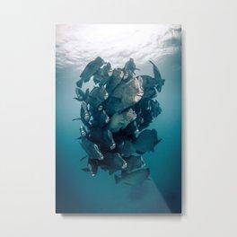 Fish School Metal Print