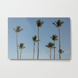Palms Punta Cana Metal Print