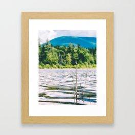 Flight of the Dragonfly Framed Art Print