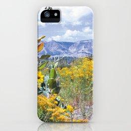 High Desert Flower iPhone Case