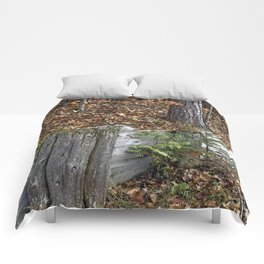 Wood Wall Comforters
