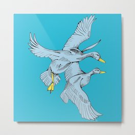 Two Grey Ducks in Blue Metal Print