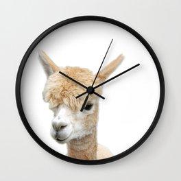 Fawn Alpaca Wall Clock