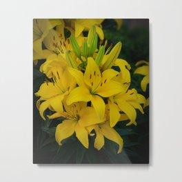 Yellow Lilies by Teresa Thompson Metal Print
