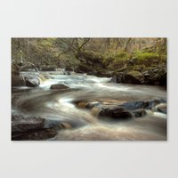 cassia beck Canvas Prints featuring West Beck, Goathland by Martin Williams
