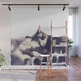 Cats again Wall Mural