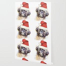 Christmas Shih Tzu puppy Wallpaper