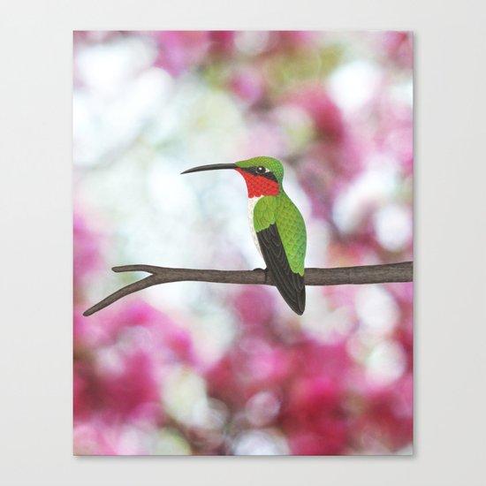 ruby throated hummingbird - male on pink bokeh Canvas Print
