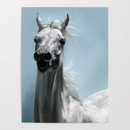 Arabian White Horse Painting Poster