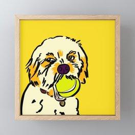 Ralph the Cavapoo Framed Mini Art Print