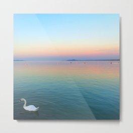 Swan in the Lake at Sunset Metal Print
