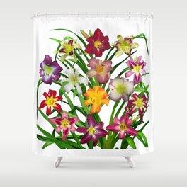 Display of daylilies II Shower Curtain