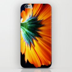 Tristan's daisy iPhone & iPod Skin