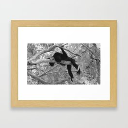 Hanging Out B&W Framed Art Print