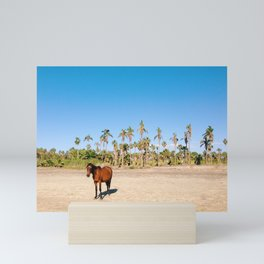 Wild horse on a beach with palm trees Mini Art Print