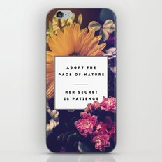 The Pace Of Nature iPhone & iPod Skin