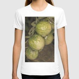 Green tomatoes T-shirt