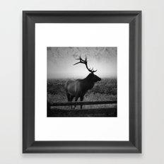 Mystic Elk Framed Art Print
