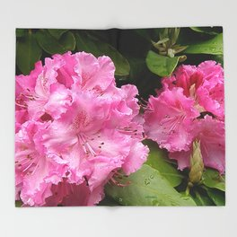 Rhododendron After Rain Throw Blanket
