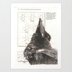 Raven 354 Art Print