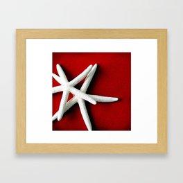 Star Fish on Red Framed Art Print