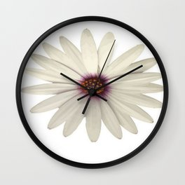 Symmetrical African Daisy with White Petals Wall Clock