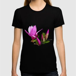 Rosy spring Magnolia T-shirt