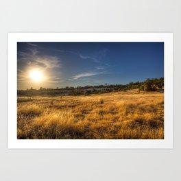Fields of Gold Art Print