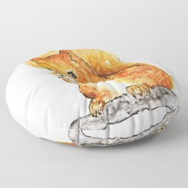 Squirrel Nutkin Peter Rabbit  Beatrix Potter Floor Pillow