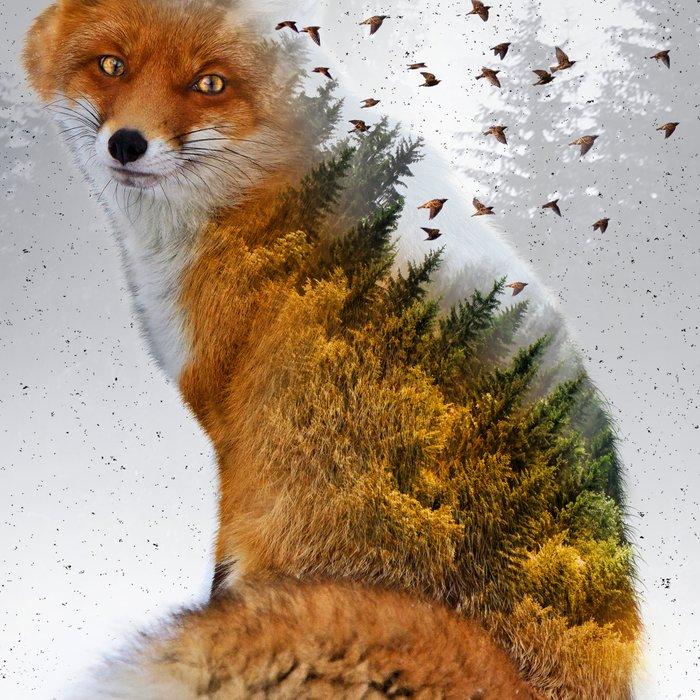 Wild I Shall Stay   Fox Leggings