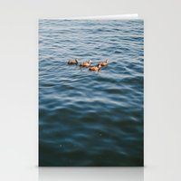 ducks Stationery Cards featuring ducks. by Justine Montigny