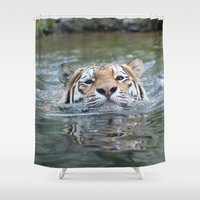 swimming Shower Curtains featuring Swimming tiger by jamfoto