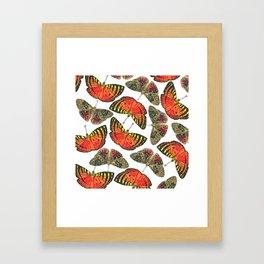 Butterfly Pattern Brown Red Orange Framed Art Print