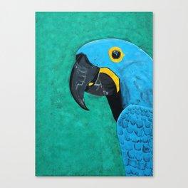 Hyacinth Macaw Gouache Painting Canvas Print