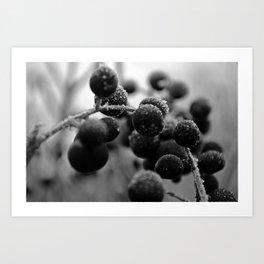 Winter's tale 20 Art Print