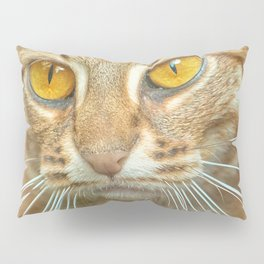 AMBER-EYED BEAUTY Pillow Sham