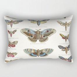 Vintage Moth Chart Rectangular Pillow