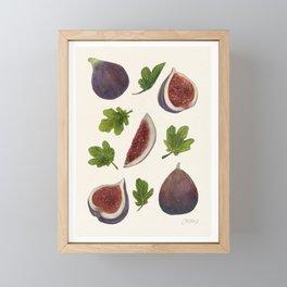 Figs and Leaves Framed Mini Art Print
